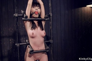 Petite Japanese slave is waxed