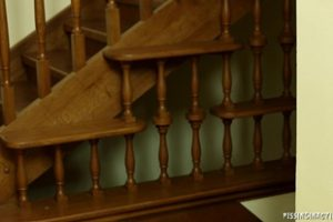 1227798 Pissinginaction 2013 05 03