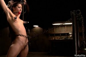 1235313 Gagged And Clamped Slave Gets Vibed